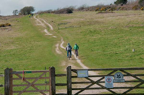 Warrior Trail Mottistone Down