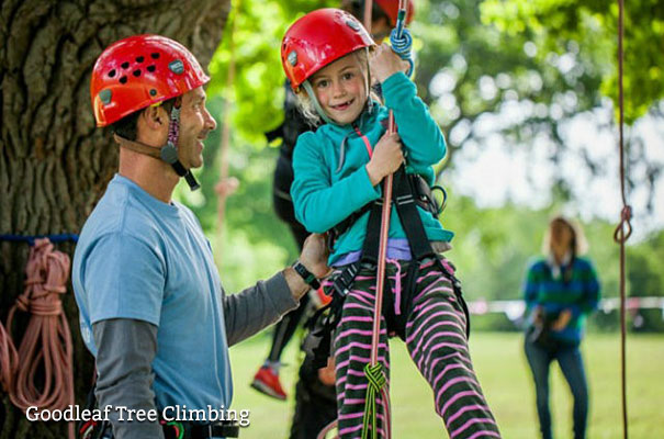 Goodleaf Tree Climbing - Isle of Wight