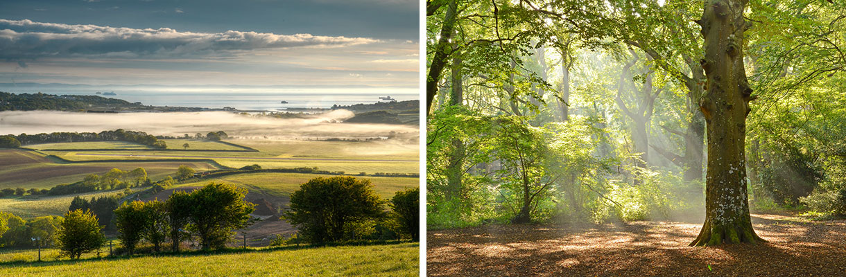 Discover the Isle of Wight for Autumn colour - Blog