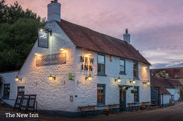 The New Inn - Cosy Fireside Eating - Isle of Wight
