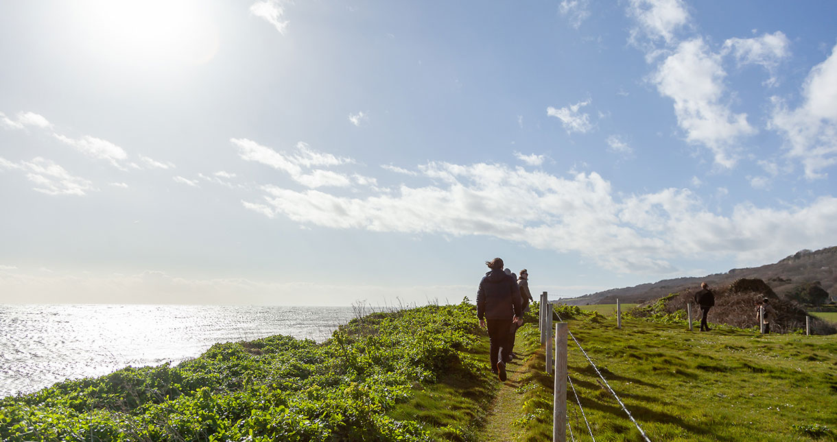 New Year Walks on the Isle of Wight