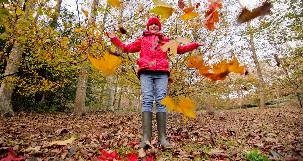 October Half Term ideas on the Isle of Wight