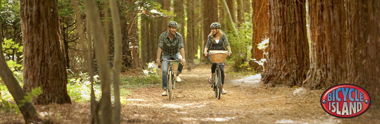 Get on your bike and enjoy the squirrel trail on the Isle of Wight