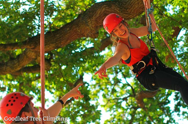 Goodleaf Tree Climbing - Green Star - Isle of Wight