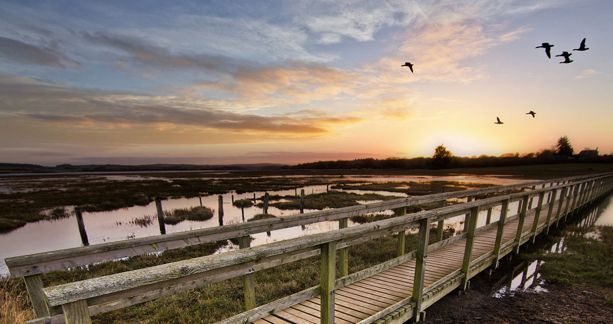 Special offers - Isle of Wight