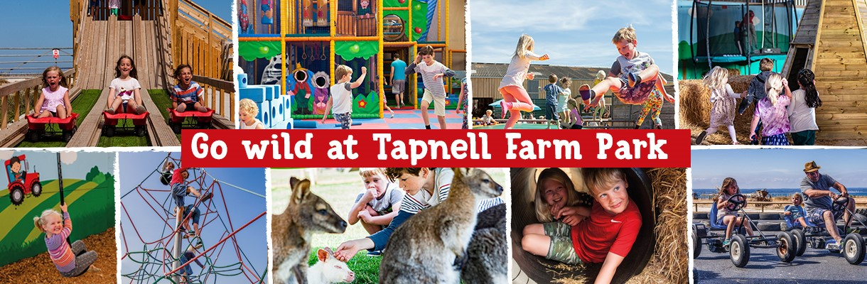 Go Wild at Tapnell Farm Park - Isle of Wight