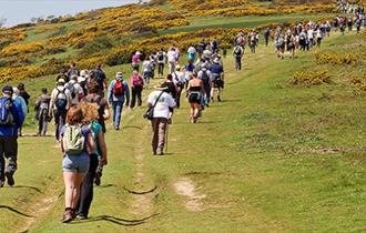 Walk the Wight 2016