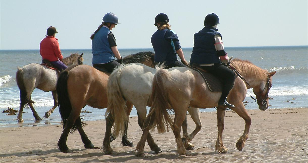 Horse Riding on the Isle of Wight