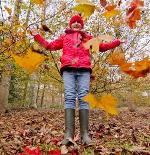 Fun Ideas for October Half Term