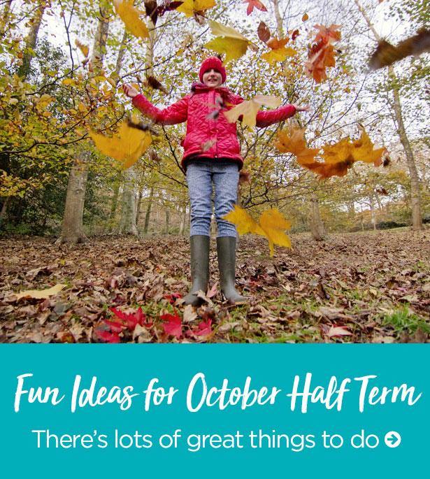 Fun Idea for October Half Term