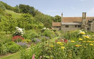 #64 - Explore the English garden with a mediterranean twist at Mottistone