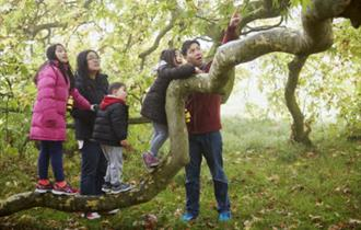 Guided walk, children event at Newtown National Nature Reserve, Isle of Wight, Things to Do