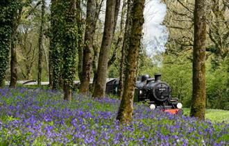 Isle of Wight, Steam Railway, Easter Fun, Events