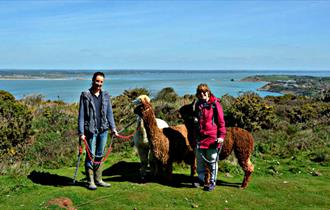 #80 - Trek with Alpacas round an area of outstanding natural beauty