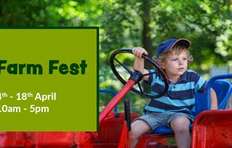 Isle of Wight, Things to Do, Easter Holidays, Robin Hill, Farm Fest