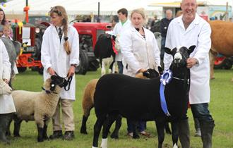 Royal Isle of Wight County Show