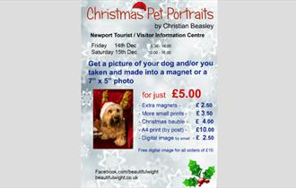 Isle of Wight, Christmas Event, Pet Friendly, Dog Friendly, Portraits