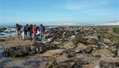 Geology and Coastal Erosion Walk - What's On, Isle of Wight