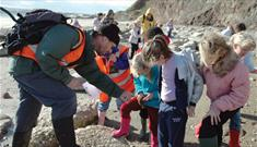 Isle of Wight, Family Fun, Things to Do, Fossil Walk, Yaverland Beach