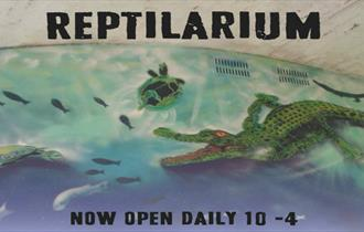 Fright Week at the Isle of Wight Reptilarium