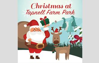 Isle of Wight, Tapnell Farm, Christmas Event, Santas Grotto, Things to Do, Family Fun