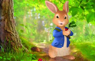 Isle of Wight, Things to Do, Tapnell Farm Park, YARMOUTH, Peter Rabbit