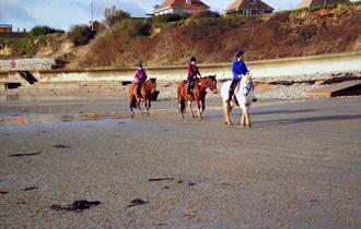 #32 - Gallop along a sandy beach with Sally's Riding