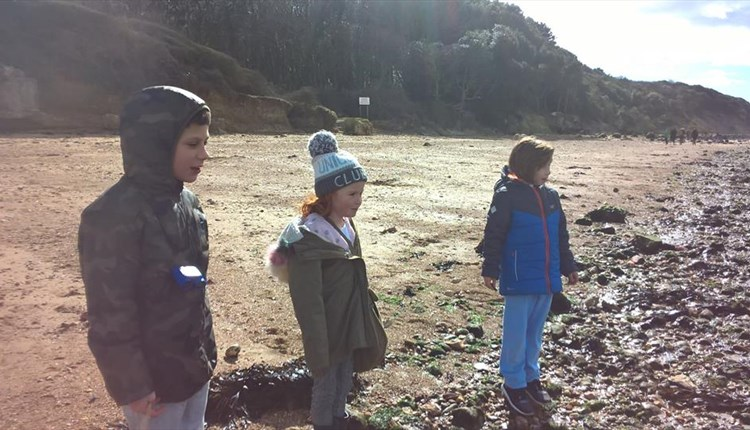 Fossil hunt with Archaeology Discovery Centre at Yarmouth - What's On, Isle of Wight