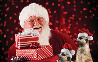 Breakfast with Santa at Isle of Wight Zoo - What's On, Isle of Wight